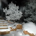 Night Time in the Snow on the Manitou Incline