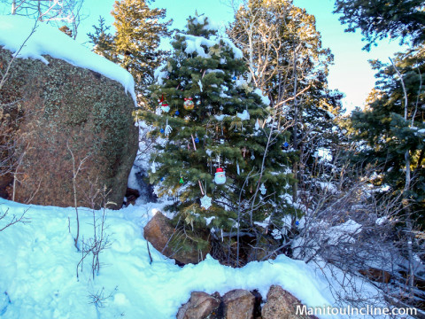 Christmas Tree at Top of Manitou Incline
